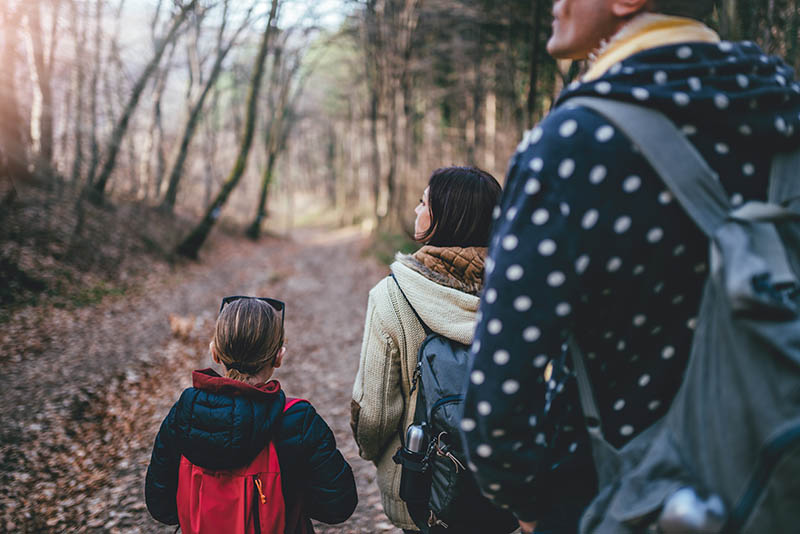 Family walking together on forest trail